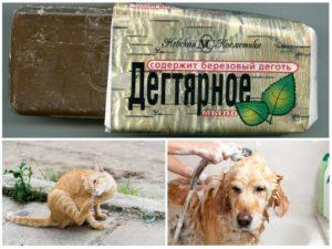 Дегтярное мыло от блох животных