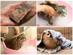 Обработка дегтярным мылом