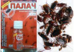Палач от тараканов